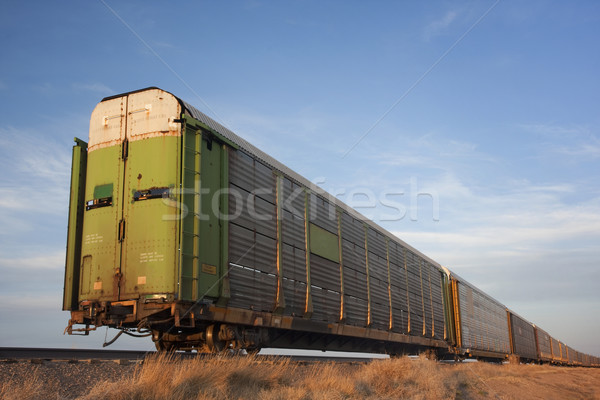 train of old stock rail cars for livestock transportation  Stock photo © PixelsAway