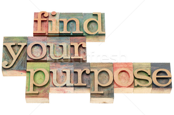 find your purpose in wood type Stock photo © PixelsAway