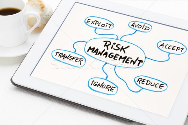 Gestão de risco e mapa comprimido fluxograma esboço Foto stock © PixelsAway
