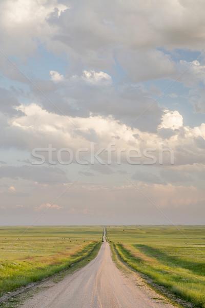 rural road in Colorado grassland Stock photo © PixelsAway