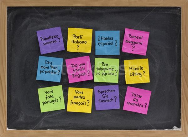 Hablar cuestión diferente idiomas docena colorido Foto stock © PixelsAway