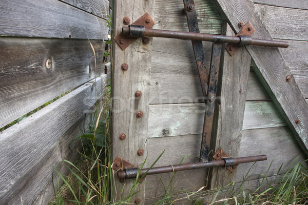gate with a lock in an old cattle ranch Stock photo © PixelsAway