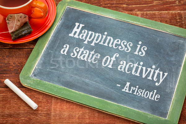 Happiness is a state of activity Stock photo © PixelsAway