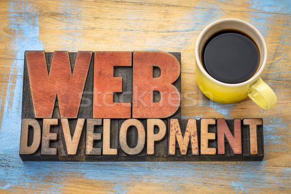 Web développement mot résumé bois type Photo stock © PixelsAway