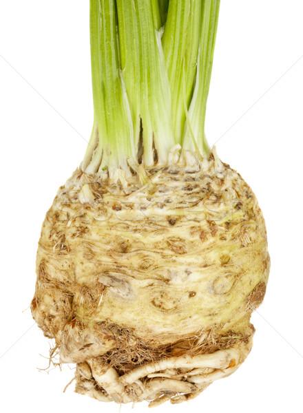 Selderij wortel geïsoleerd witte salade vers Stockfoto © PixelsAway