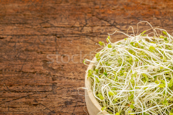 broccoli and clover sprouts Stock photo © PixelsAway