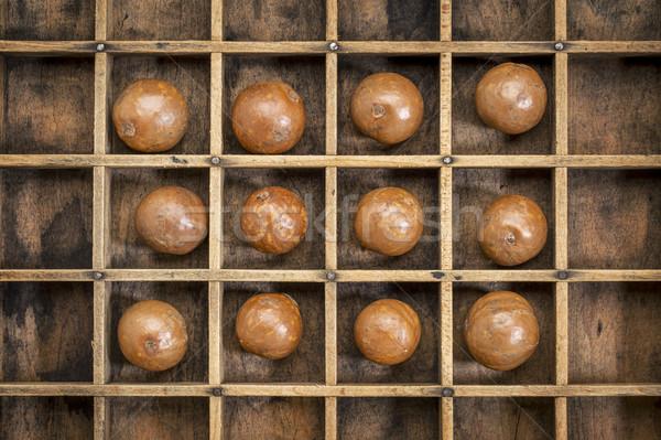 macadamia nuts abstract Stock photo © PixelsAway
