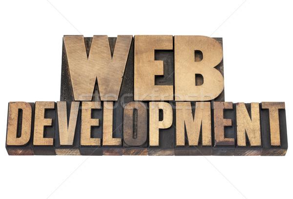 ストックフォト: ウェブ · 開発 · 木材 · タイプ · 孤立した · 文字