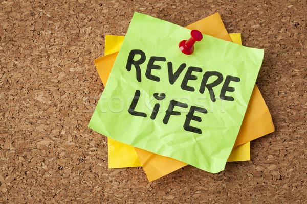 revere life on a sticky note Stock photo © PixelsAway