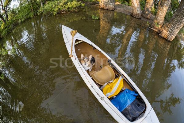 Hond kano expeditie meer Colorado vervormd Stockfoto © PixelsAway