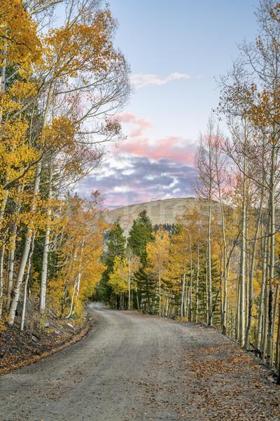 Zurück Landstraße Colorado Bäume Herbstfarben Pfanne Stock foto © PixelsAway