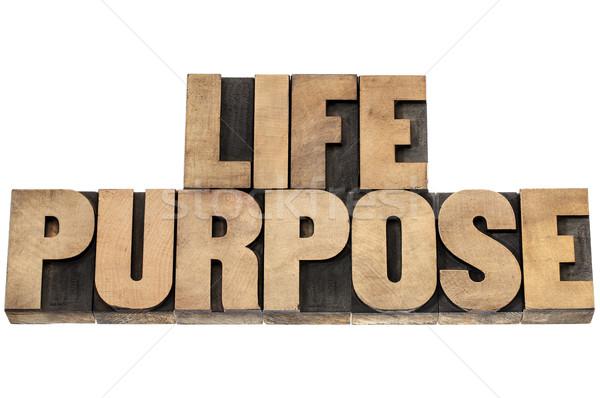 life purpose in wood type Stock photo © PixelsAway