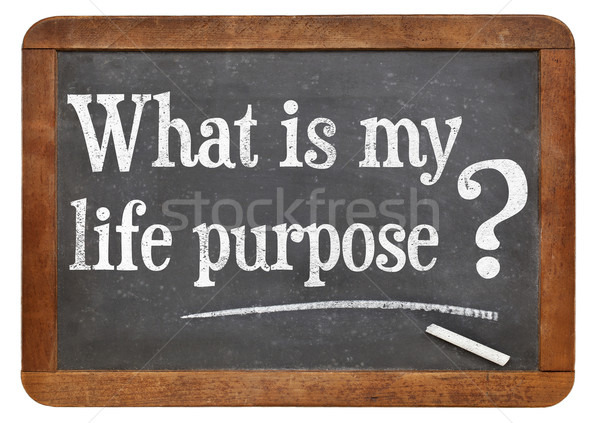 What is your life purpose question Stock photo © PixelsAway
