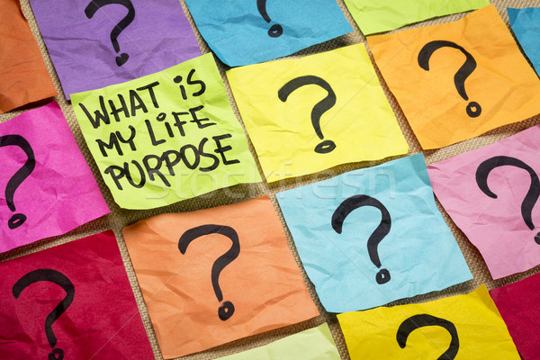 What is my life purpose question Stock photo © PixelsAway