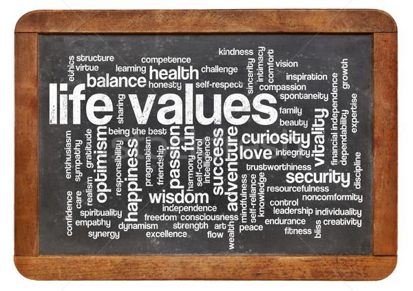 言葉の雲 可能 生活 価値観 ヴィンテージ 黒板 ストックフォト © PixelsAway
