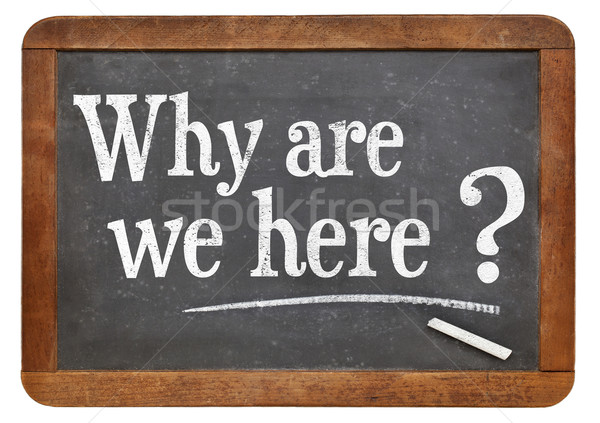 Stock photo: Why are we here question