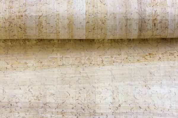 Rolar papiro papel áspero textura folha Foto stock © PixelsAway