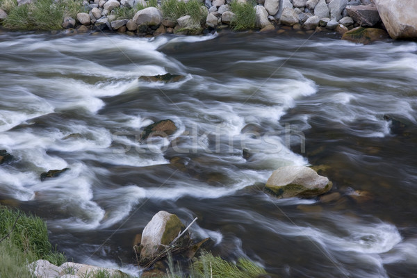 whitewater in mountain river Stock photo © PixelsAway