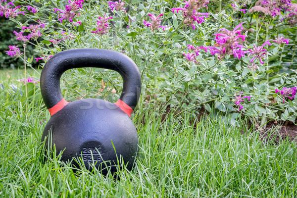heavy kettlebell in backyard Stock photo © PixelsAway