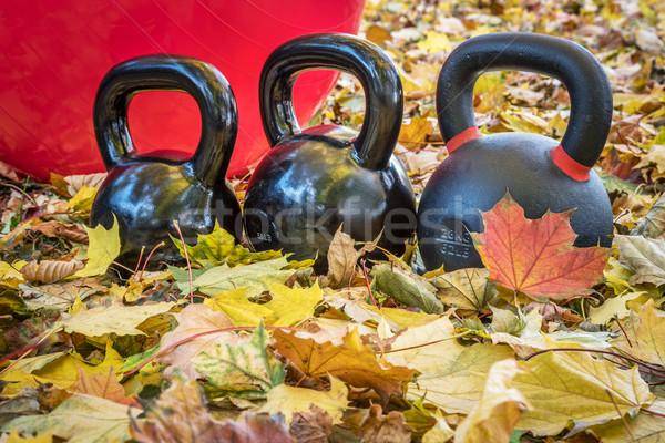 kettlebells and exercise ball Stock photo © PixelsAway