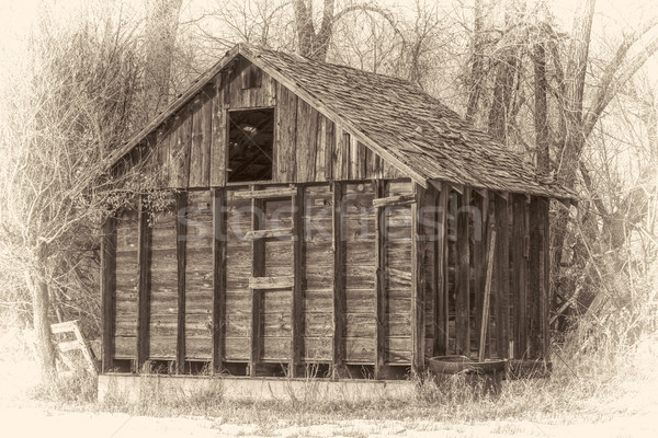 rustic, small,  abandoned barn in woods Stock photo © PixelsAway