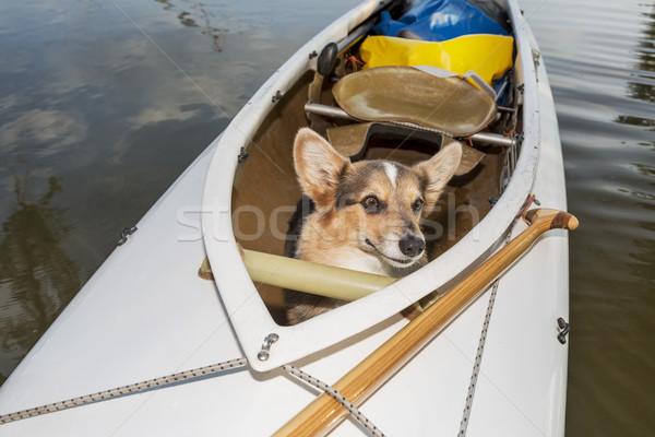 Kano hond expeditie meer Colorado vervormd Stockfoto © PixelsAway
