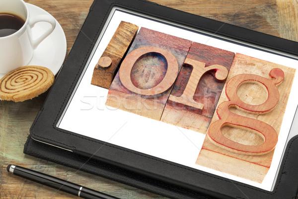 Organisatie internet domein hout Stockfoto © PixelsAway