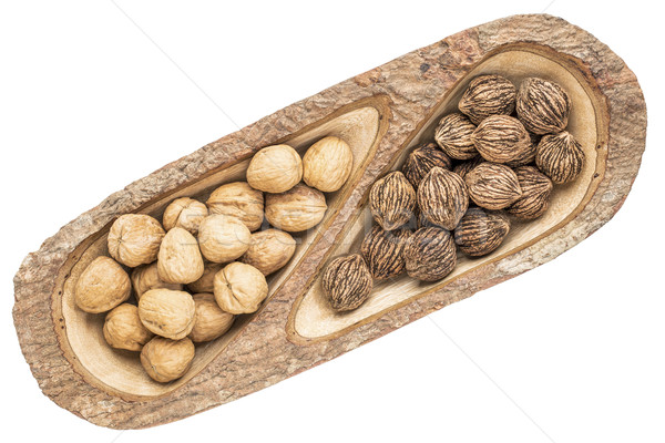 English and black walnuts  Stock photo © PixelsAway