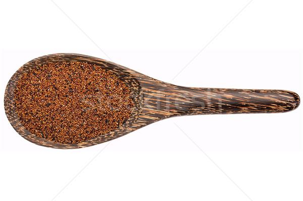 Korn Baby Holzlöffel isoliert weiß Stock foto © PixelsAway