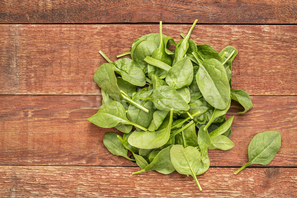 measuring responses of spinach leaves in various light waves They sense light to control their growth and rapid responses to the describe the numbers of atoms of different elements making leaf pigments leaf structure.