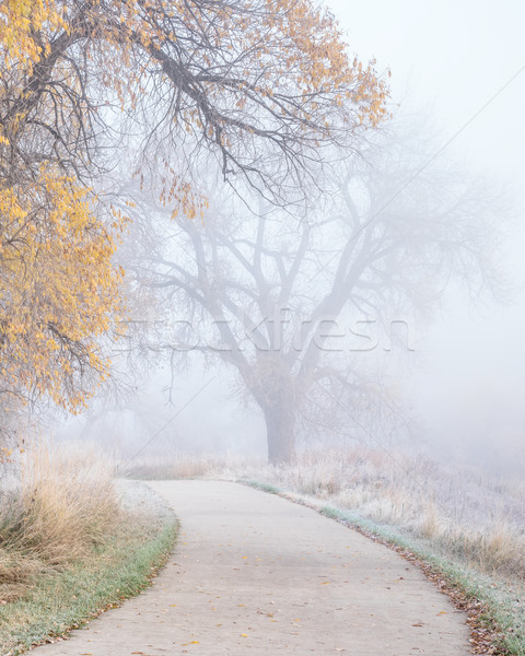 bike trail with fog and frost  Stock photo © PixelsAway