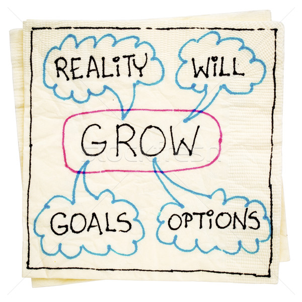 goals, reality, will and options - GROW Stock photo © PixelsAway
