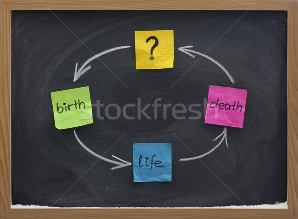 life cycle or reincarnation concept on blackboard Stock photo © PixelsAway