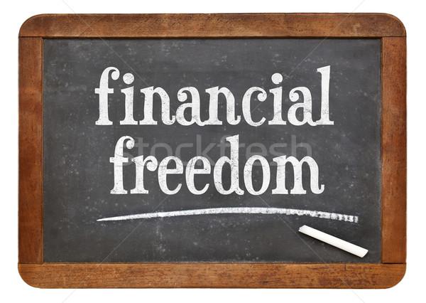 financial freedom on blackboard Stock photo © PixelsAway