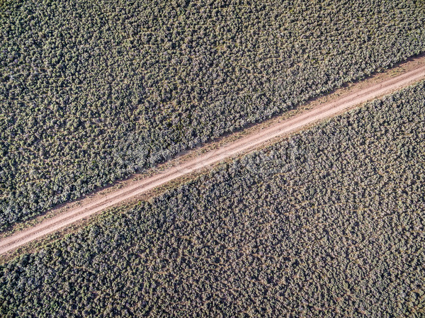 road and sagebrush aerial view Stock photo © PixelsAway