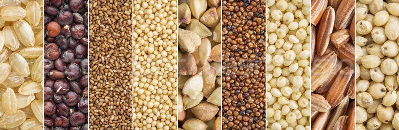 Glutenvrij collectie bruin rijst collage Stockfoto © PixelsAway