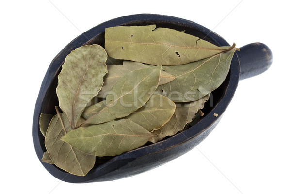 scoop of dried bay leaves Stock photo © PixelsAway