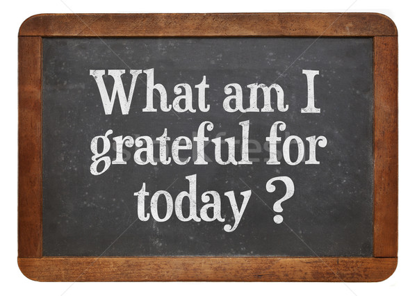 what am I grateful for today? Stock photo © PixelsAway