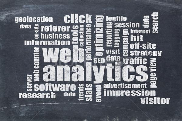 Web analytics nuage de mots tableau noir vintage données Photo stock © PixelsAway