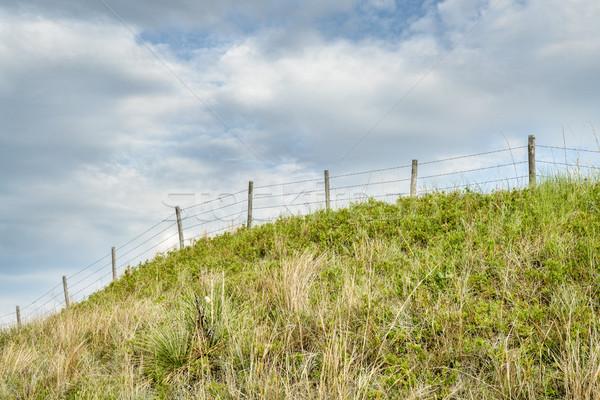 Dikenli tel çit yaz manzara Stok fotoğraf © PixelsAway