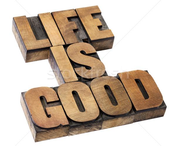 Vie bon positivité isolé texte vintage Photo stock © PixelsAway