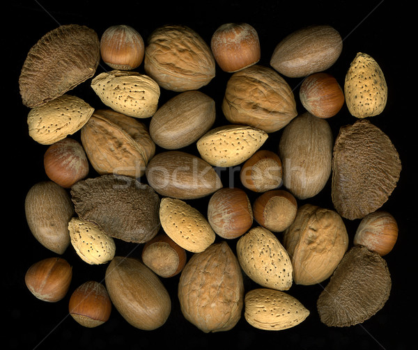 Mix nuts in shells: walnut, hazelnut, pecan, almond, brazil Stock photo © PixelsAway