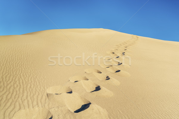 Hombre huellas duna cielo azul arena Foto stock © PixelsAway