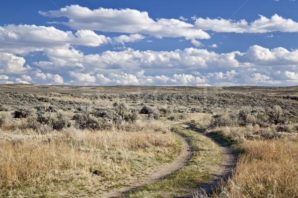 高い 砂漠 ワイオミング州 未舗装の道路 北 早い ストックフォト © PixelsAway