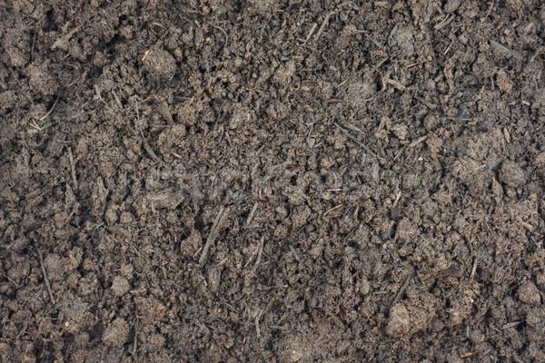 肥料 汚れ 穀物 土壌 ストックフォト © PixelsAway
