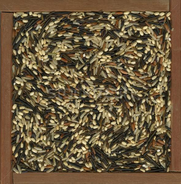 Sauvage brun riz mélange coloré plusieurs Photo stock © PixelsAway