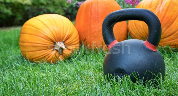 Nehéz kettlebell tökök vasaló udvar gyep Stock fotó © PixelsAway