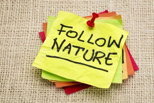 follow nature Stock photo © PixelsAway