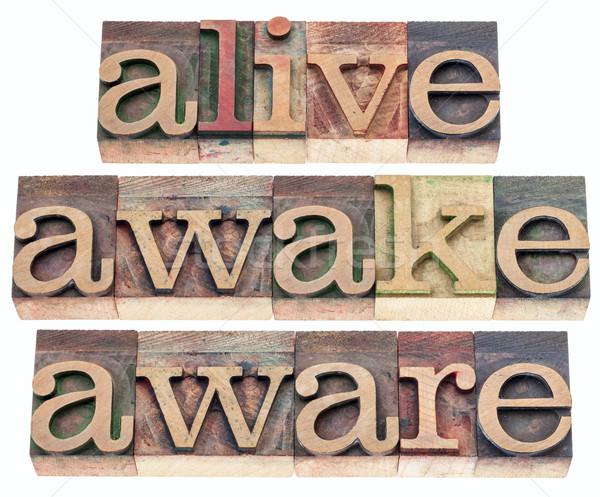 Vivo desperto palavras isolado texto vintage Foto stock © PixelsAway