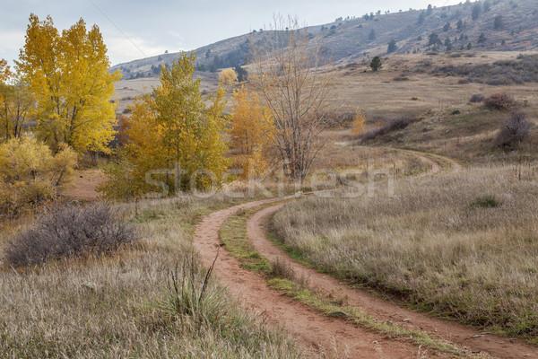 dirt road in Colorado foothills Stock photo © PixelsAway